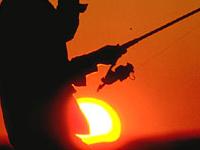 Платная любительская рыбалка