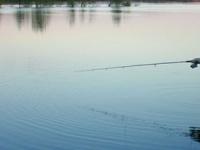Платная рыбалка – рыбалка на любой вкус