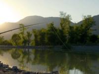 Платная рыбалка в Подмосковье вчера и сегодня